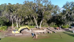 18th Fairway Tree Moving Project